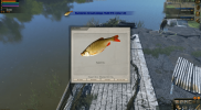 Atom Fishing II 3