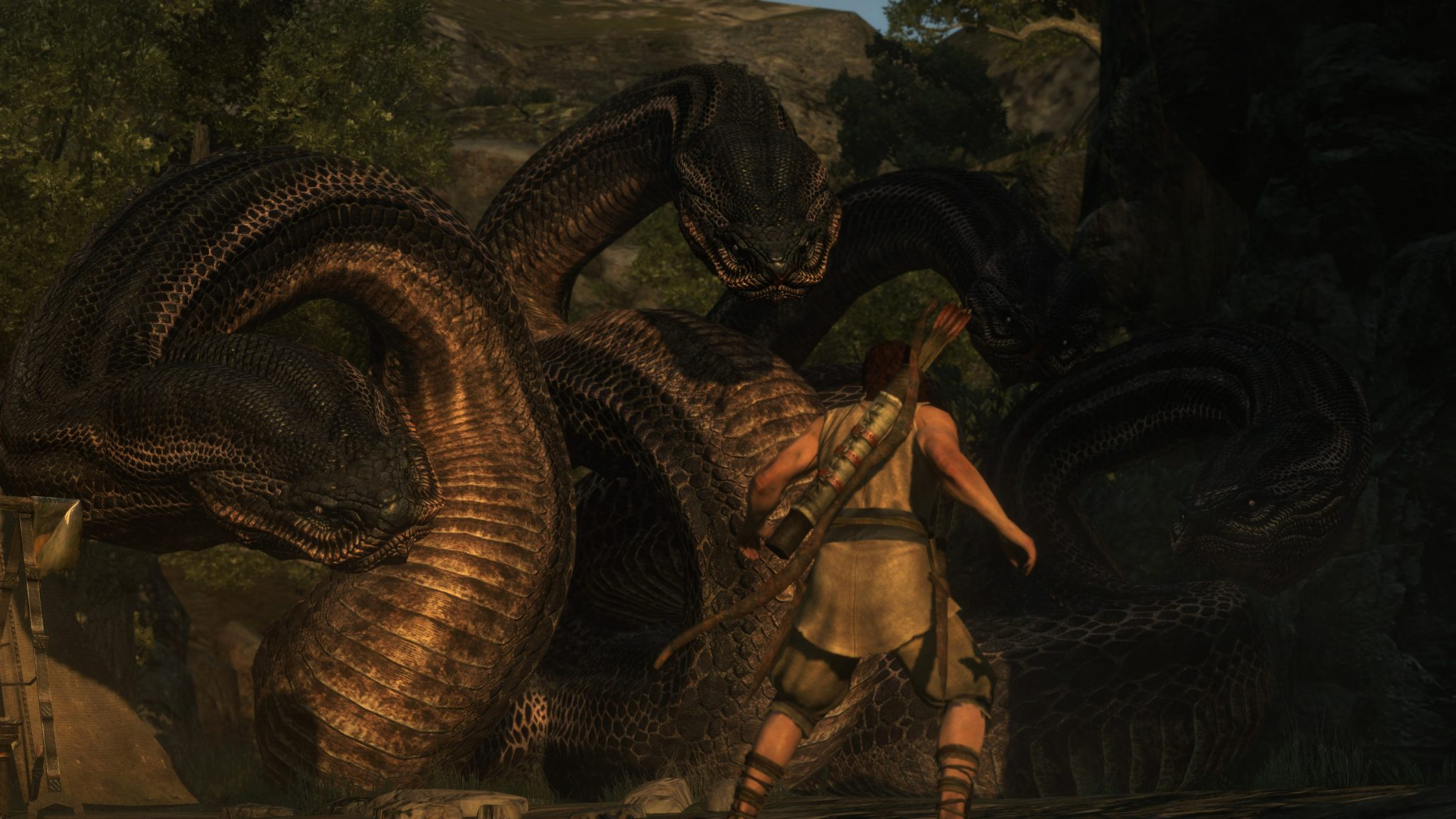 Dragon's Dogma Dark Arisen (2)