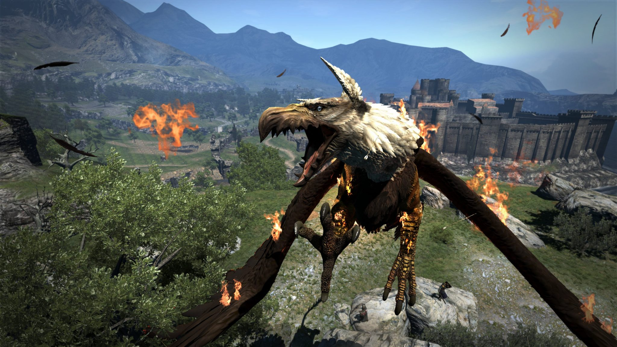 Dragon's Dogma Dark Arisen (4)