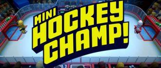 Mini Hockey Champ!