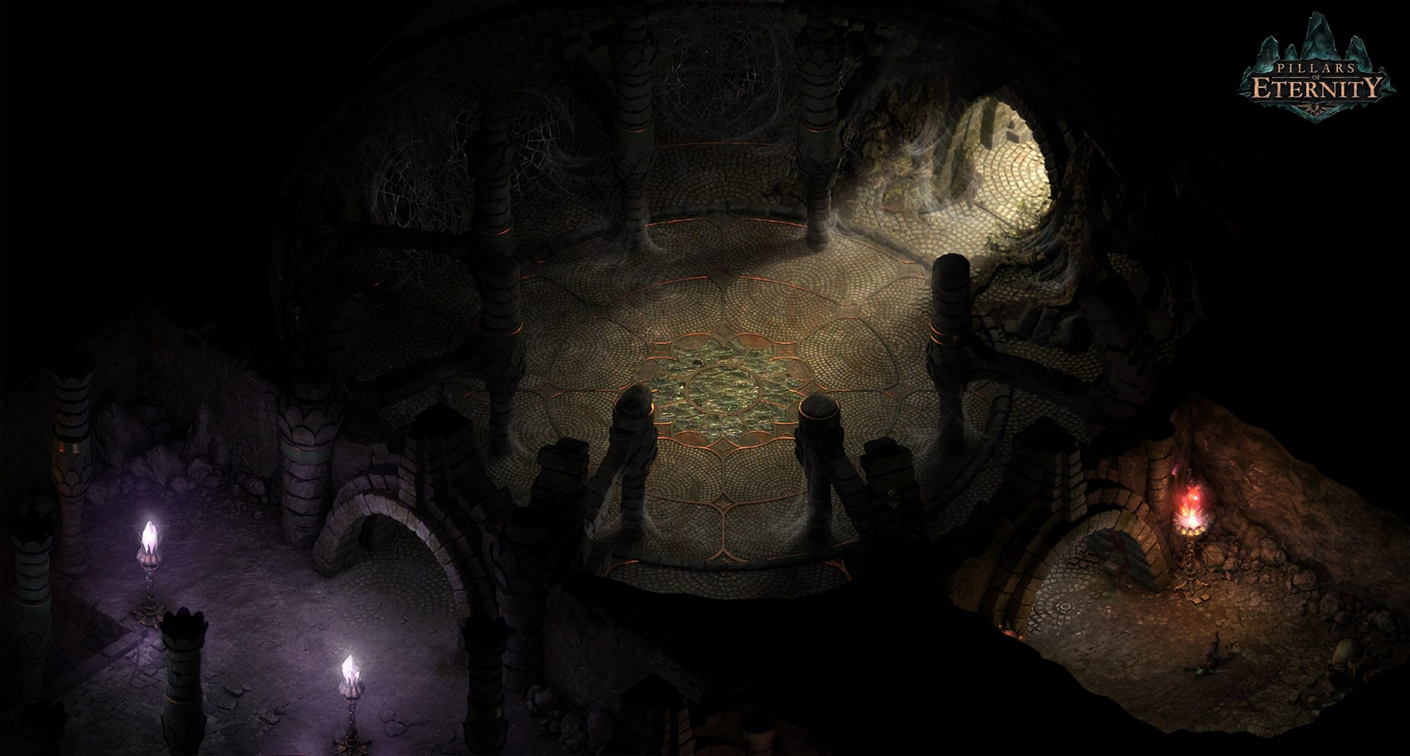 Pillars of Eternity (6)